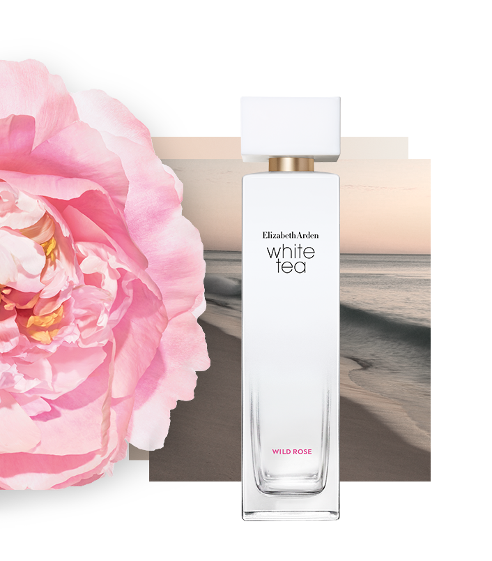 Wild Rose - A sweet, delicate floral fragrance nuanced with freshness that puts a delightful smile on your face